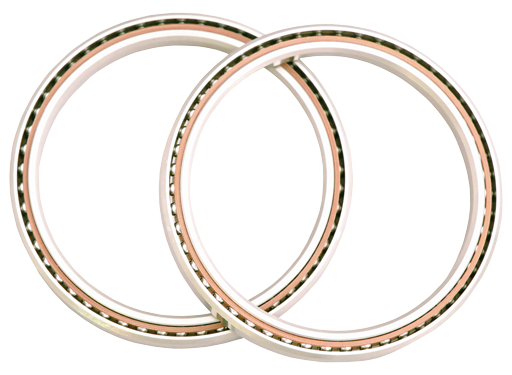 Schatz semiconductor bearings